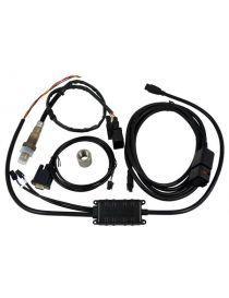 Large bande / AFR Innovate LC-2 avec câble 2,4m, sonde BOSCH LSU 4.2 et insert acier à souder