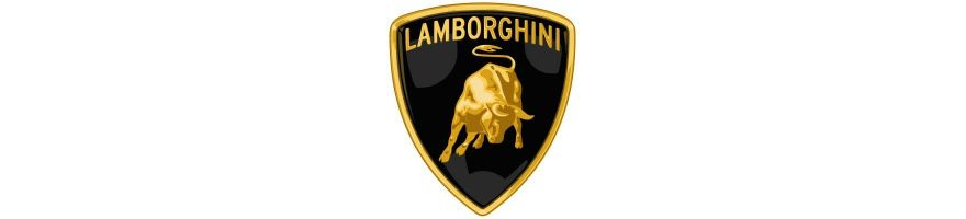LAMBORGHINI - Kit durites de frein aviation