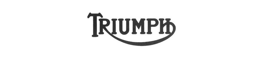 TRIUMPH - Kit durites de frein aviation