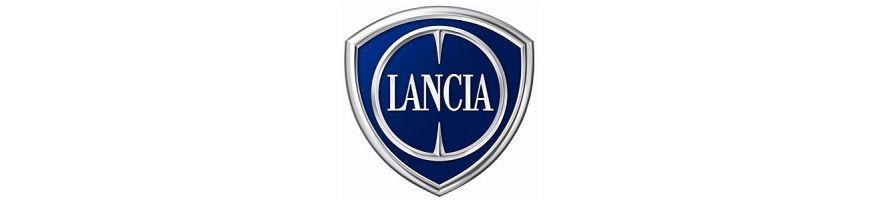 LANCIA - Kit durites huile silicone