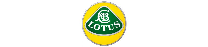 LOTUS- Kit durites de frein aviation