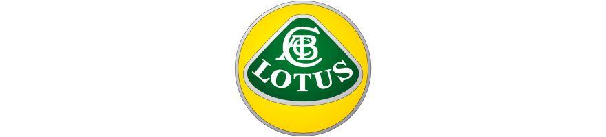 LOTUS - Coussinets trimétal ACL