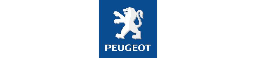 PEUGEOT - Kit gros freins