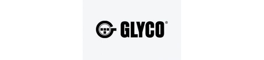 FEDERAL MOGUL GLYCO