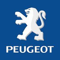 PEUGEOT - Poussoirs mécaniques