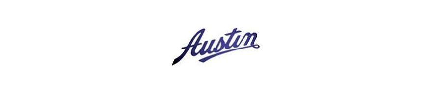 AUSTIN - Kit flexibles de frein aviation